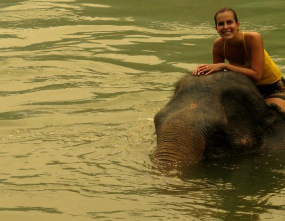 andar-elefante-laos-7