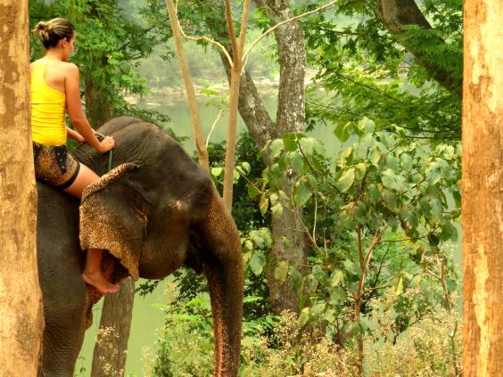 andar-elefante-laos-92
