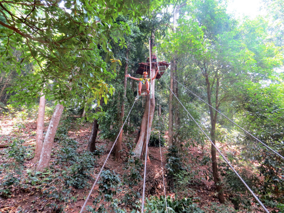 jungle-dragon-flight-zipline-chiang-mai-tailandia-8